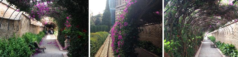 jardinesmonforte1
