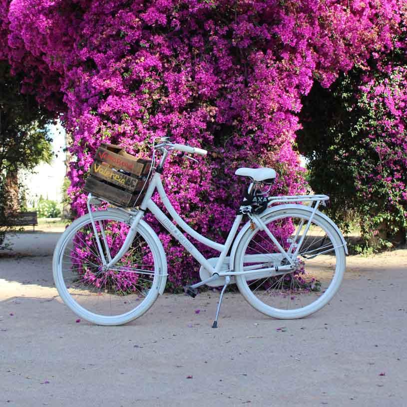 2e hands cortina fiets kopen in Valencia