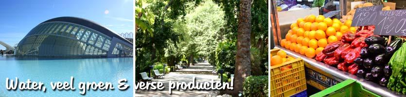 wonen-in-valencia-5---water