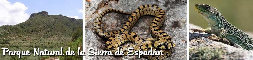 Parque-Natural-de-la-Sierra-de-Espadán