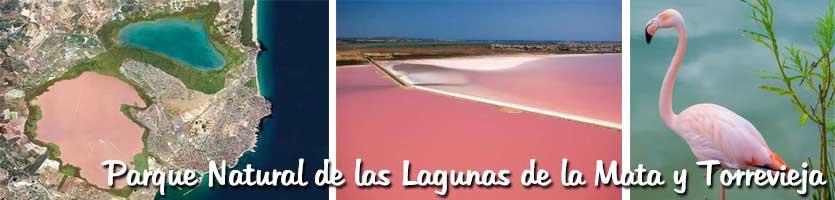 Parque-Natural-de-las-Lagunas-de-la-Mata-y-Torrevieja