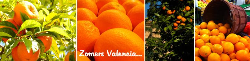 Sinaasappelsbanner
